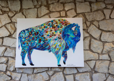 dentist with bison logo